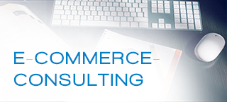 04 e commerce consulting 320